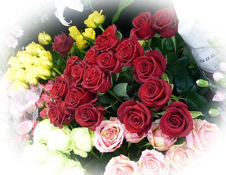 定番薔薇の花