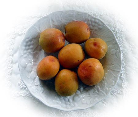 杏 色づき始めました