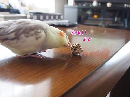 ボール~♪