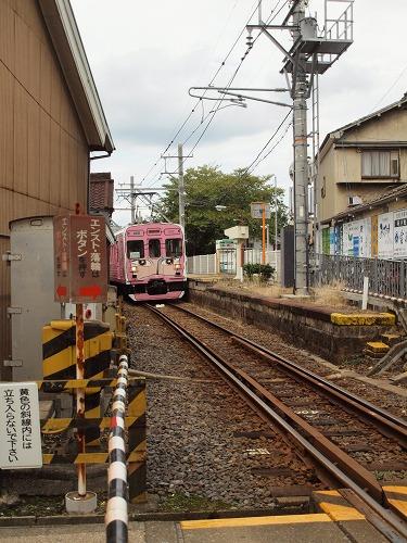 P9109594.jpg