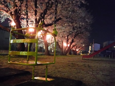 1藤丸の桜