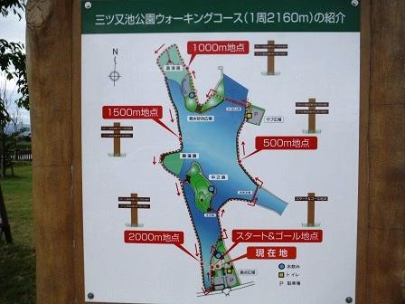 1三ツ又池公園8