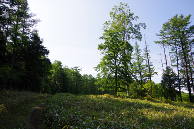 鶏頂山04