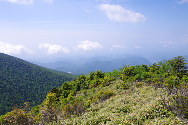 鶏頂山19