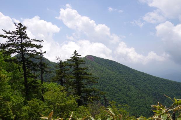 鶏頂山29