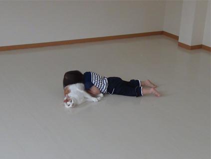 娘の猫との遊び方-1