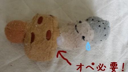 20150604_105302.jpg