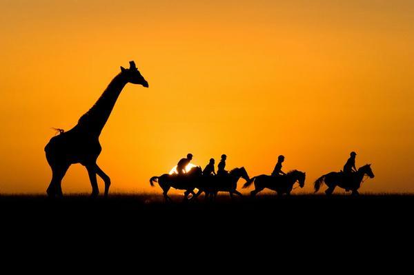 特殊部隊(挿入画ケニアの夕陽)image
