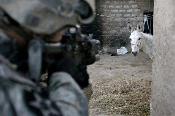 特殊部隊(挿入画兵士の目の先に)image