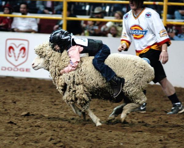 新年(羊さんに乗る)image