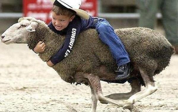 新年(羊さんに乗る2)image
