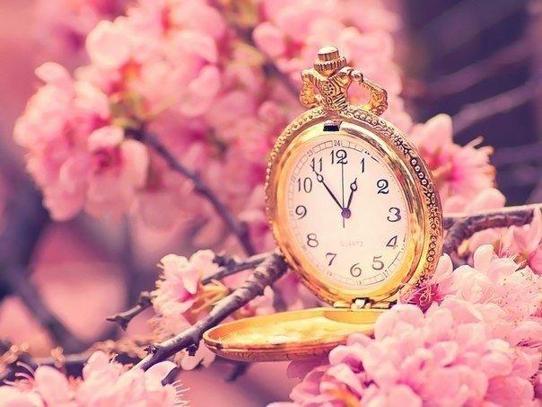 歴史(サクラと時計)image