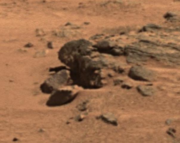 プロジェクトP(オバマの頭と呼ばれる岩)image