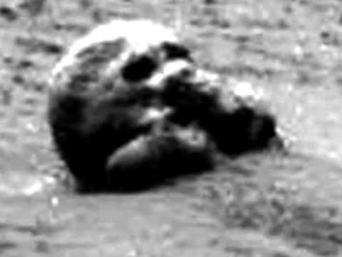 プロジェクトP(火星のスカル)image