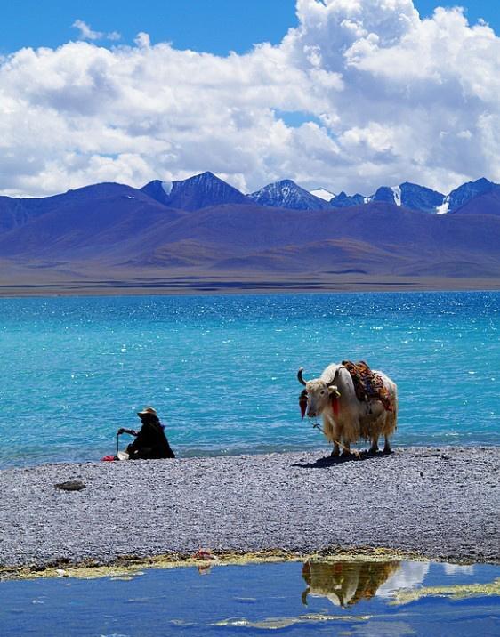 空襲(修飾画像チベットあたり)image