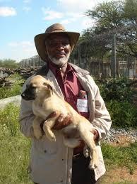 古い犬種(CCFで)image