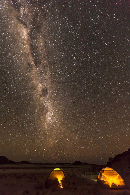 古い犬種(Namibiaの夜空)image