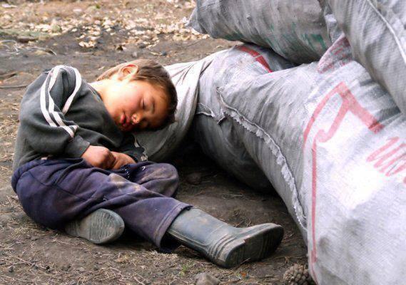 ドル(パキスタンの眠る少年)image