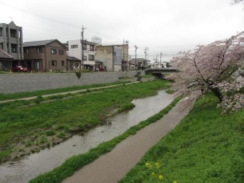 下肴町跡(伊賀川)