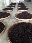 上質な黒豆を厳選