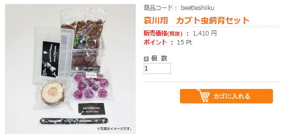 aikawa_kabutomushi.jpg