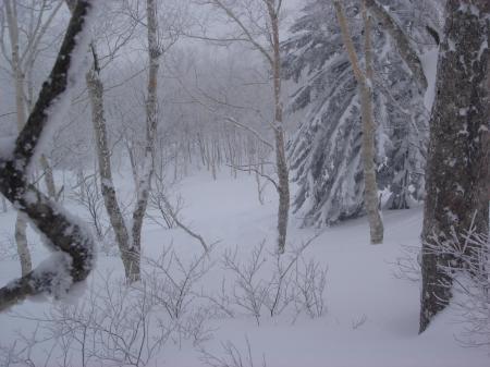 未圧雪ゾーン突入~