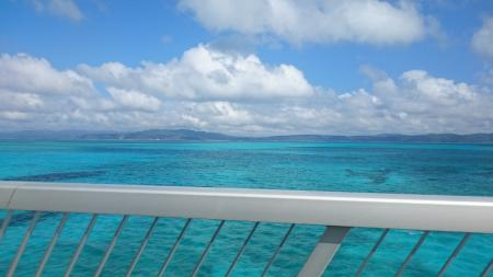 海の色すごい!