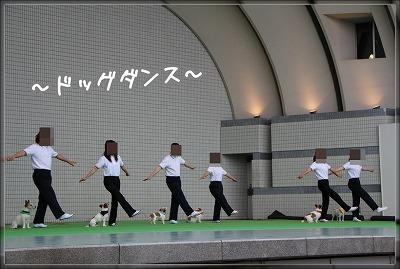 ドッグダンス