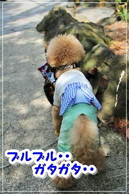 IMG_8127 (2)