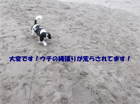 00_convert_20150304184658.jpg