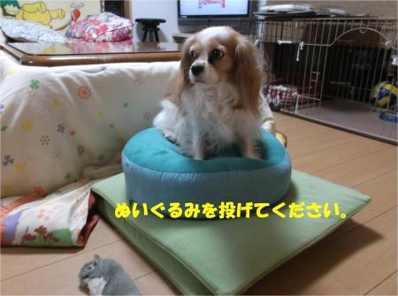 01_convert_20150109174318.jpg