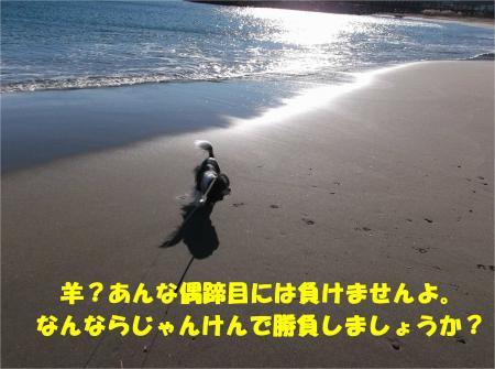 02_convert_20150105175246.jpg