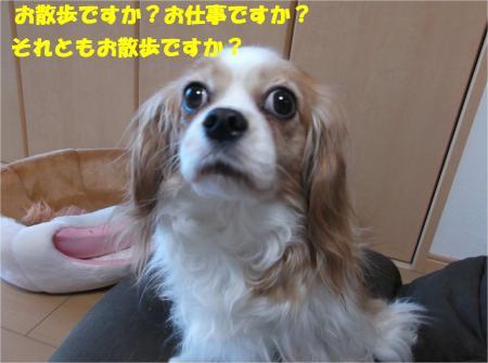 02_convert_20150206201143.jpg