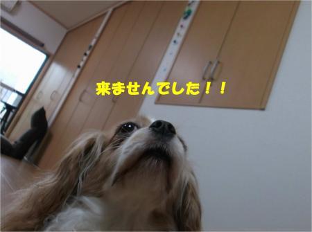 02_convert_20150413175759.jpg