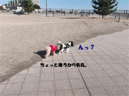 03_convert_20141228161856.jpg