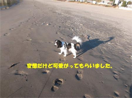03_convert_20150106185120.jpg
