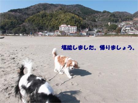 03_convert_20150216175929.jpg