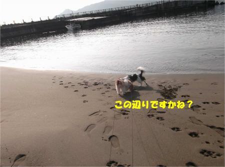 03_convert_20150324195939.jpg