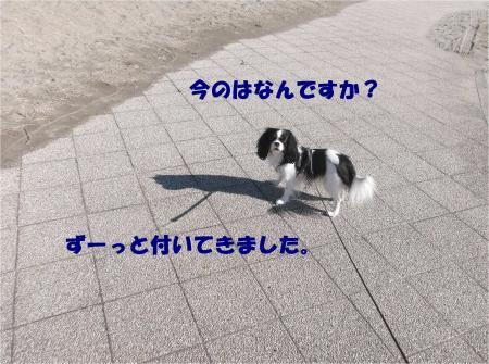 04_convert_20141228161906.jpg