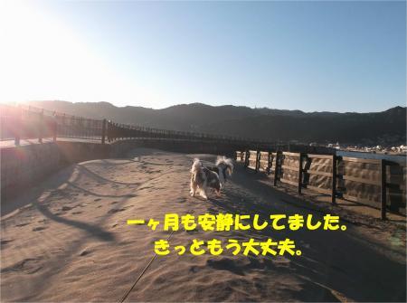 04_convert_20150107173013.jpg