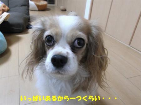 04_convert_20150122180658.jpg