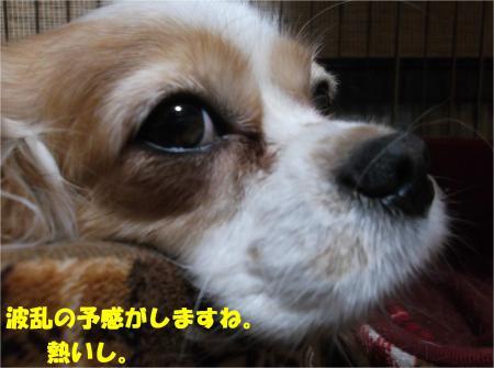 04_convert_20150123185202.jpg