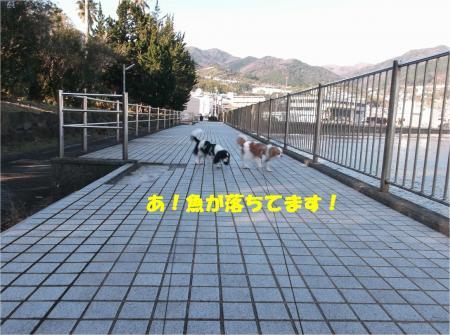 04_convert_20150127195414.jpg