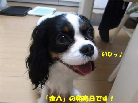 04_convert_20150128182357.jpg