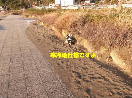 04_convert_20150202184318.jpg
