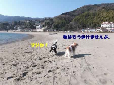 04_convert_20150216175940.jpg