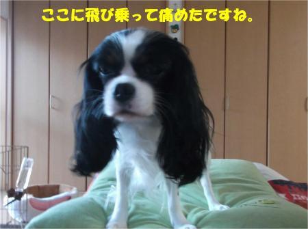 05_convert_20141222180918.jpg