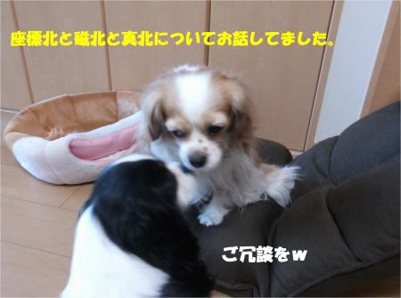 05_convert_20150206201211.jpg