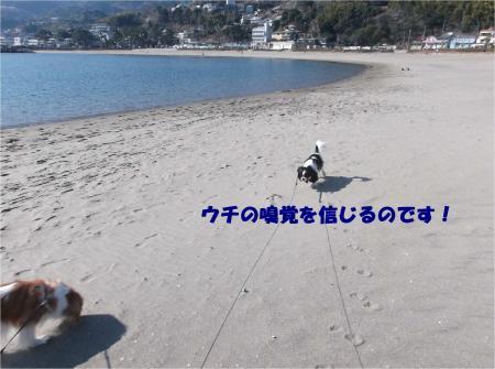 05_convert_20150216175950.jpg