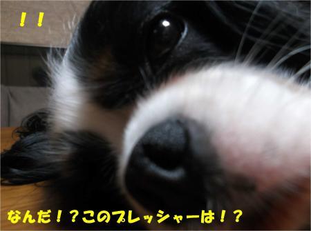 05_convert_20150417181310.jpg